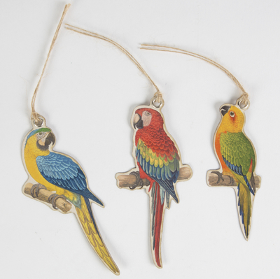 Gift tags, parrots, set of 12