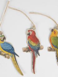 Etiketter, papegojor, 12 st