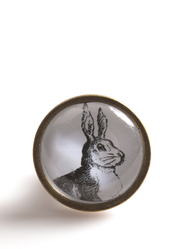 Drawer Knob Hare