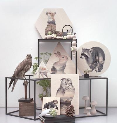 Tavla/Print på plywood Faunascapes - Owl