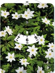 Parking Disk - White Anemone