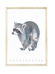 Poster A3 Faunascapes - Raccoon