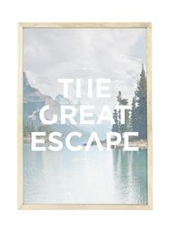 Poster A3 Faunascapes - The Great Escape