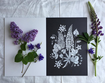 Colouring book/paintings Blomstermandala