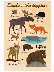 """Affisch Ingela Arrhenius """"Skandinaviska däggdjur"""" 50x70 cm"""