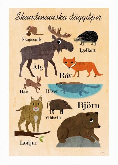 """Affisch Ingela P Arrhenius """"Skandinaviska däggdjur"""" 50x70 cm"""