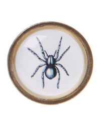 Drawer Knob Spider
