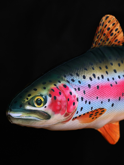 Pillow Rainbow Trout 62 cm