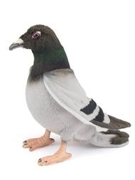 Stuffed animal, Pigeon