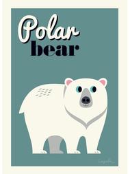 "Poster Ingela P Arrhenius ""Polar bear"" 50x70 cm"