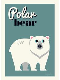 "Affisch Ingela P Arrhenius ""Polar bear"" 50x70 cm"